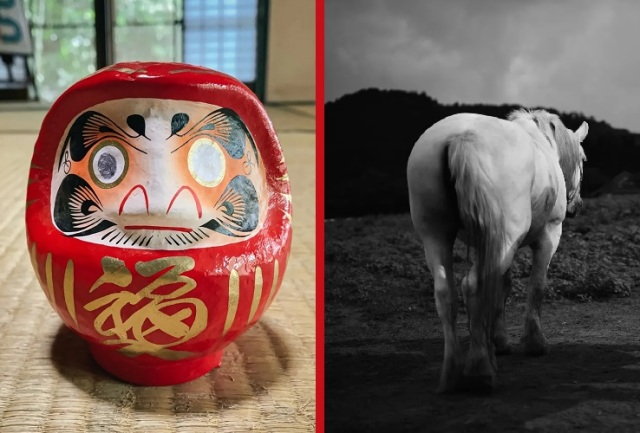 Japan's daruma dolls seem to be causing problems for horses at the Tokyo Olympics