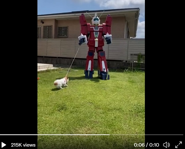 Amazing anime robot cosplayer takes his dog for a walk wearing his cardboard mecha【Videos】