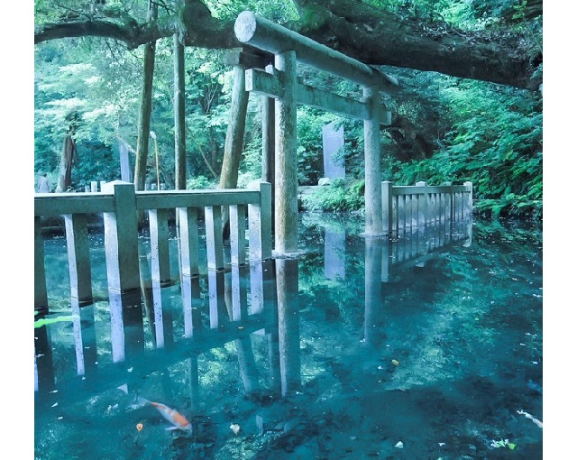 This shrine in Japan looks too beautiful to exist in our world