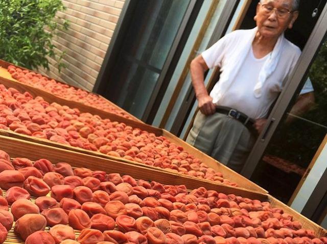 How to make epic umeboshi like a Japanese grandpa