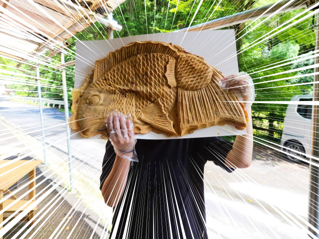 How to make the largest taiyaki fish-shaped sweet bean pancake in the world