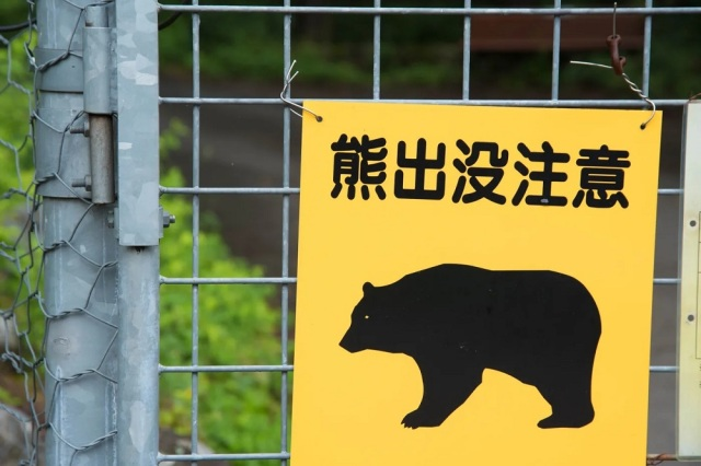 """""""Who the hell are you?"""" Japanese man asks bear while it's attacking him"""