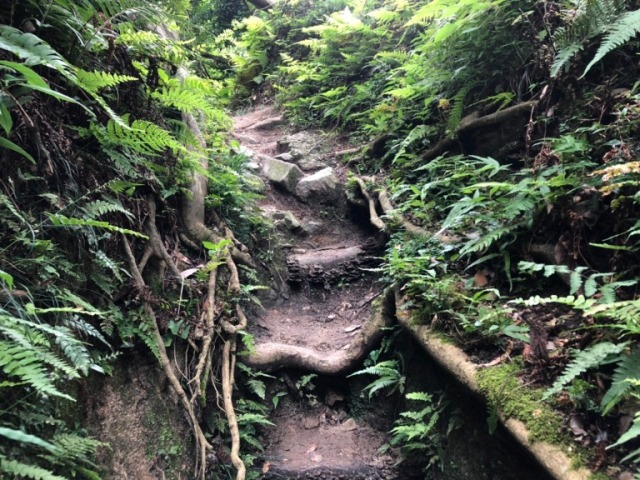Kyoto hiking – Recreating a Touken Ranbu sword boy expedition in real life【Photos】