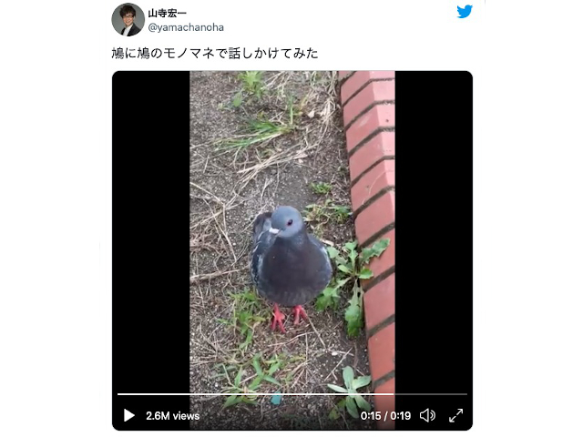 Here's what happens when Cowboy Bebop's star voice actor tries imitating a bird【Video】