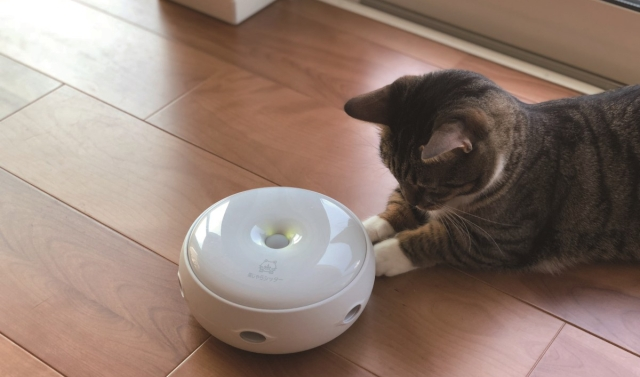Japanese company makes a robot specifically to keep your cat entertained