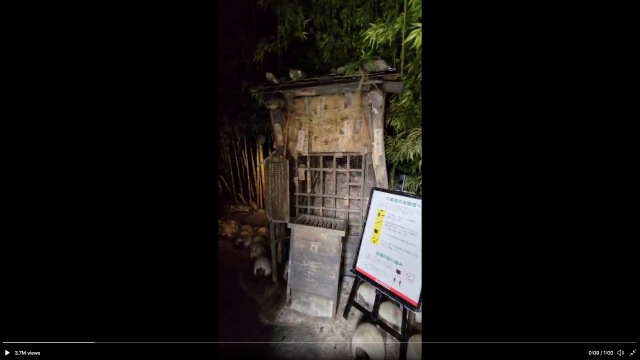 Japanese video game arcade entrance takes visitors on an adventure from the front door【Video】